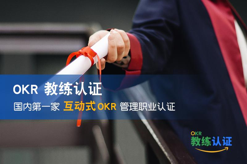 问责制伙伴:如何设定、跟踪和实现目标与关键成果(OKRs)